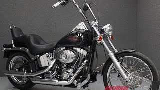 5. 2009  HARLEY DAVIDSON  FXSTC SOFTAIL CUSTOM - National Powersports Distributors