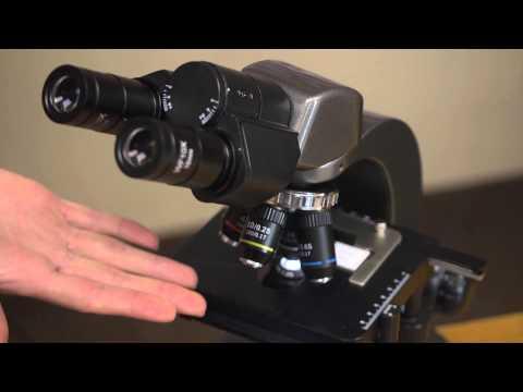 Carson Optical Professional Biological Microscope MS-160 HD