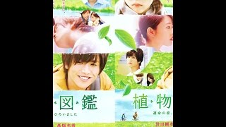 Nonton Evergreen Love Film Subtitle Indonesia Streaming Movie Download