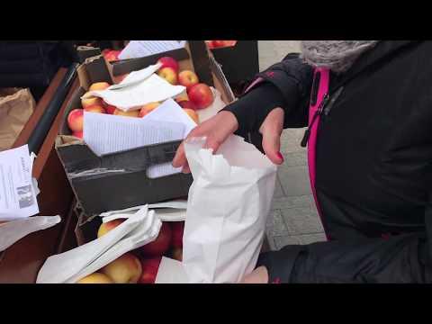 Wideo1: Agrounia rozdawała jabłka na Słowiańskiej
