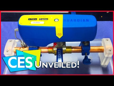 Luggage That Follows You + Smart Water Leak Sensors? The Weirdest Gadgets of CES 2018 (видео)