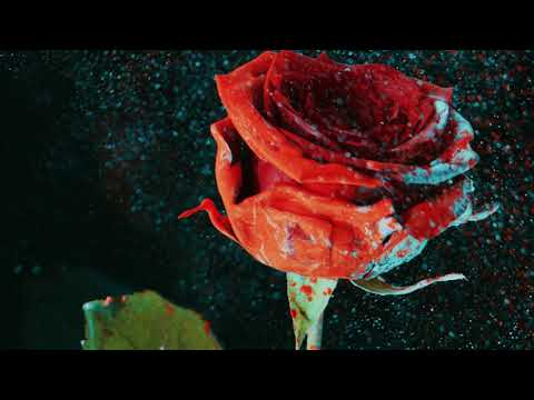 Martin Garrix & David Guetta - So Far Away (feat. Jamie Scott & Romy Dya) (Curbi Remix)