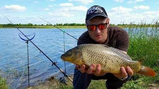 бюджетная карповая рыбалка