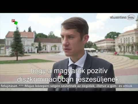 A vajdasági magyar fiatalok itthon képzelik el jövőjüket-cover