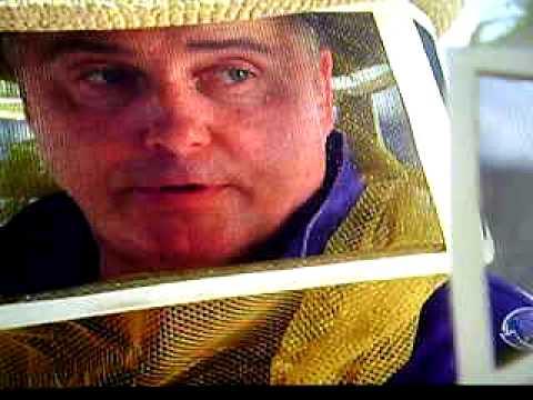 CSI - 8x04 - The Case of the Cross-Dressing Carp (DUBLADO)