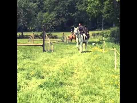 Video me and my old pony blue xxxx download in MP3, 3GP, MP4, WEBM, AVI, FLV January 2017