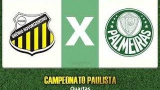 Novorizontino x Palmeiras AO VIVO (Narração)