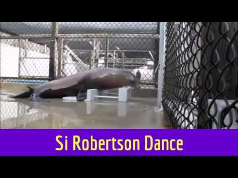 Si Robertson Dance
