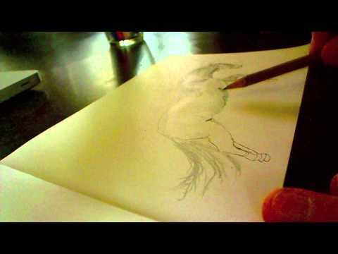 drawing a horse – ein Pferd zeichnen – disegnare un cavallo – dessiner un cheval