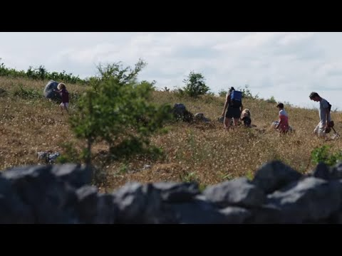 An Bhoirinn   TG4   A Year through the seasons in the majestic natural beauty of the Burren