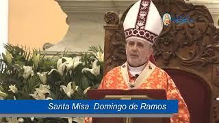 El Evangelio comentado Domingo de Ramos