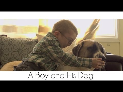 Tissue Alert: The Story of a Disabled Boy and His Three Legged Dog