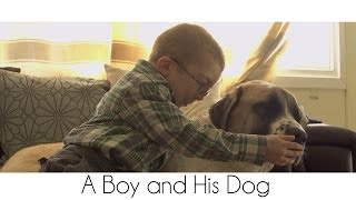 Incredible Story Of How Abandoned Dog Helped Disabled Boy Overcome Fear Of Outside World