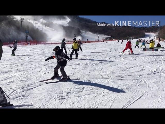 SIDECUT VIDEO