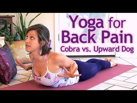Beginners Yoga For Back Pain How To Do Upward Facing Dog & Cobra Pose Correctly Jen Hilman