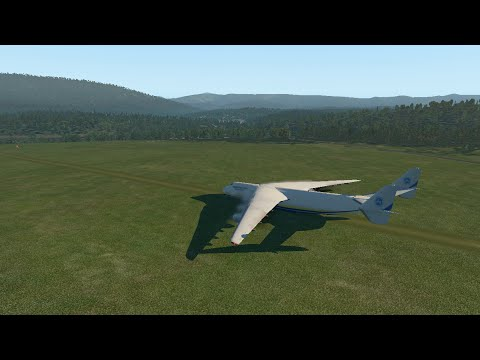 Huge Planes VS Grass Runway