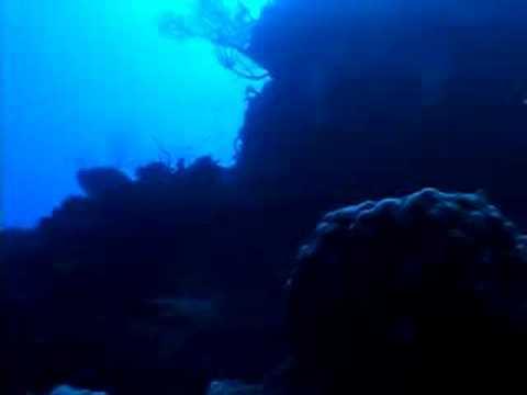 Buceo extremo en las islas Cayman