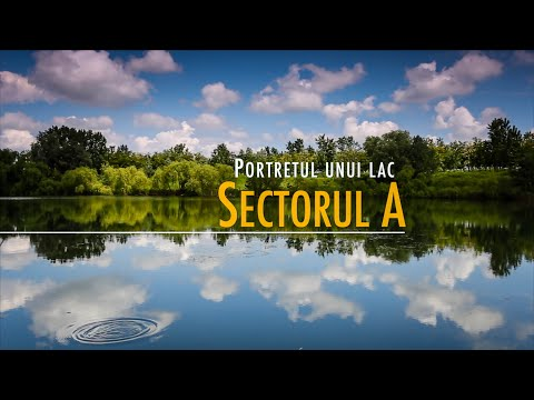 Portretul unui lac: Sectorul A