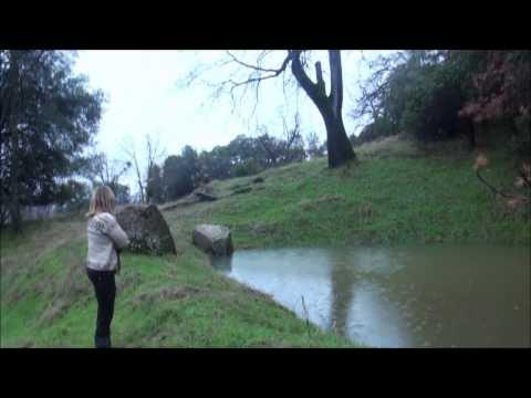 Yosemitebear Mountan Farm Pond 1 17 (видео)