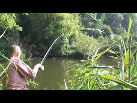 рыболов видео ловля на донку