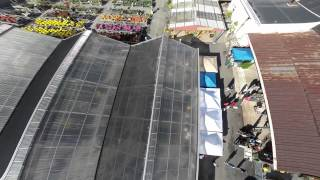 Beltsville (MD) United States  city photo : Behnke Nursery Garden Party Beltsville 10-04-14 - MAV Maryland Aerial Video