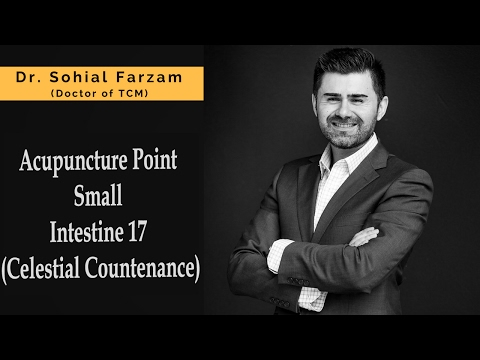 Acupuncture Point Discussion - Small Intestine 17 (Celestial Countenance)