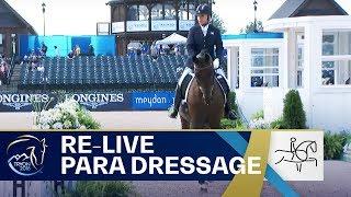 RE-LIVE Para-Dressage – Grade V Individual | FEI World Equestrian Games 2018
