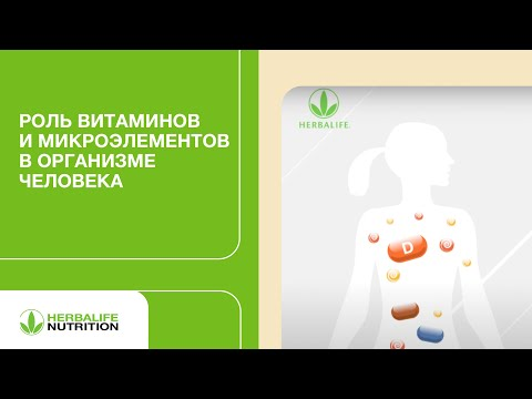 Роль витаминов и микроэлементов в организме человека