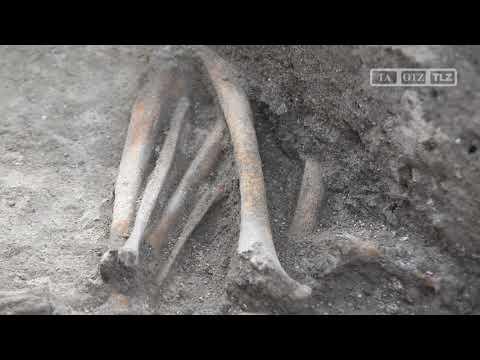 4.000 Jahre alte Fundstücke bei archäologischen Grabu ...