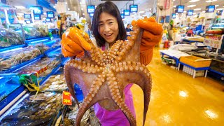 Video Korean Seafood Breakfast - BIG OCTOPUS + Extreme SQUIRTING Seafood in Seoul, South Korea! MP3, 3GP, MP4, WEBM, AVI, FLV Juli 2019