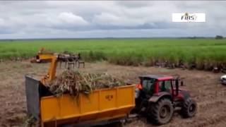 Agriculture as a driver of Nigeria's economic recovery