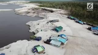 Video Mendulang Emas di Tanah Borneo MP3, 3GP, MP4, WEBM, AVI, FLV Juli 2019