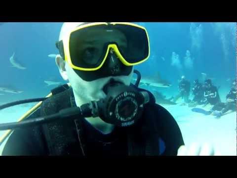Shark Diving met Stuart Cove bij Bahama's