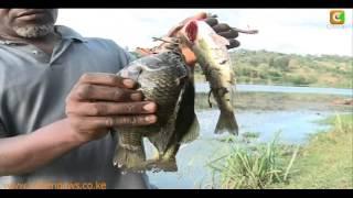 Mweiga Kenya  city photos gallery : Kibaki's Retirement Home In Mweiga