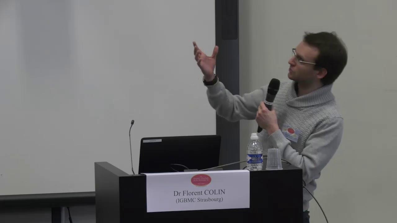 GENIDA : projet participatif de recherche sur les déficiences intellectuelles d'origine génétiques