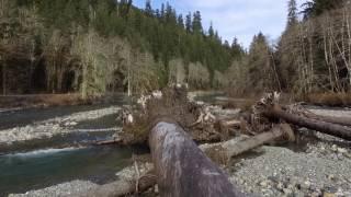 Mountain Loop Highway - Washington State