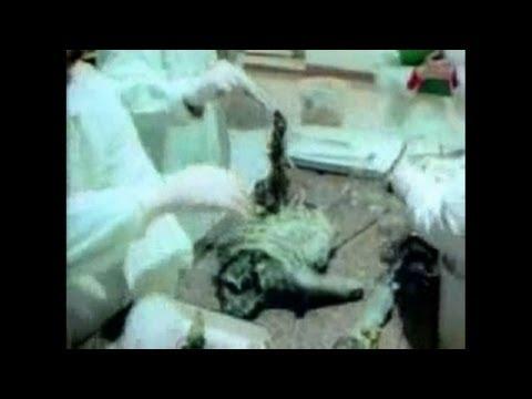 KGB's UFO & Alien Autopsy: Leaked Footage