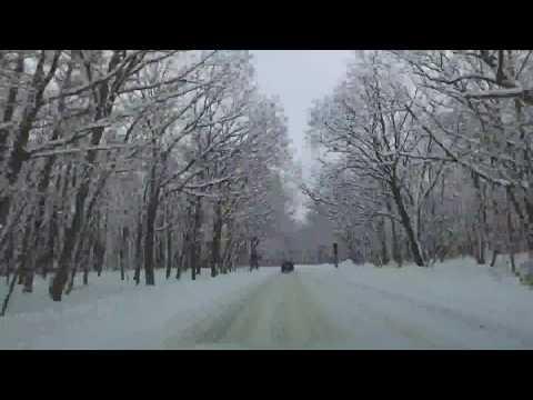 雪景色の奥日光 車載動画 竜頭の滝から戦場ヶ原まで
