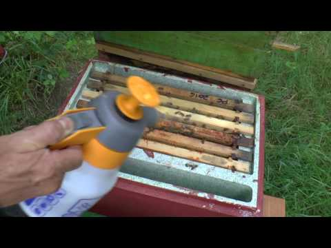 How To Raise Queen Bees - The Nicot Queen Rearing System Explained