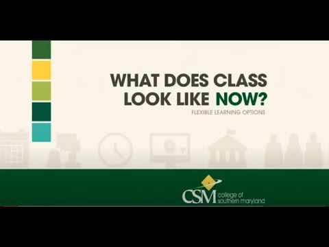 CSM现在的课程是什么样子的?