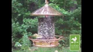 Classic Perch Bird Feeder - Good Directions