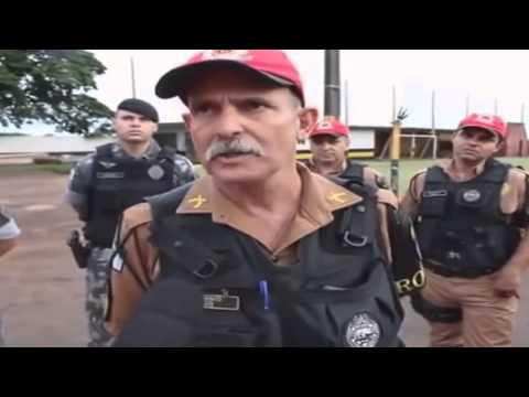 Memes e videos virais - Esse é o tal do mula