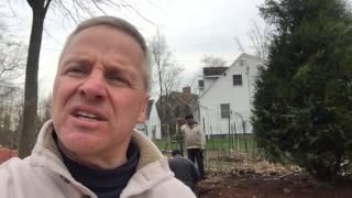 Steve Griggs Design   Planting 20 Foot Trees in 15 Minutes (Part 2)