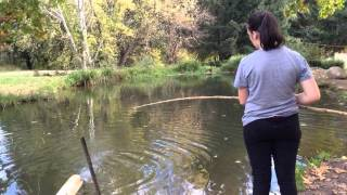 Bright Australia  City new picture : Bright Victoria Australia-Trout Fishing