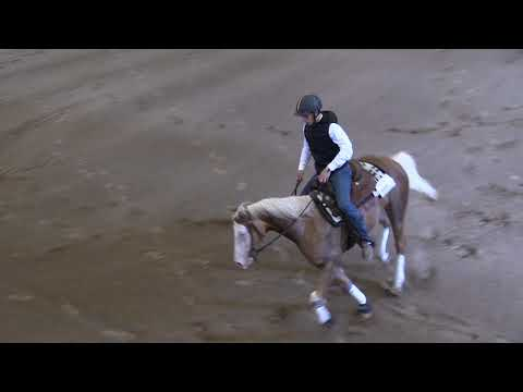 Campeonato Navarro de Reining 040519 Video 3