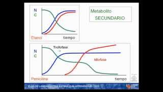 Umh1399 2012-13 Lec001-3c Metabolitos Primarios Y Secundarios