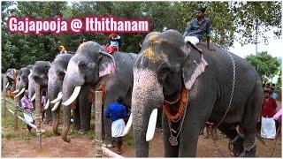 Gajapooja at Ithithanam