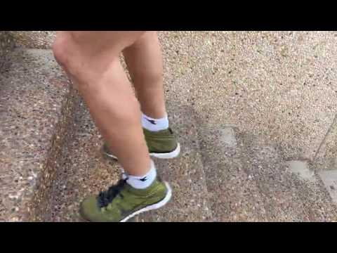 סבולת שרירית מדרגות