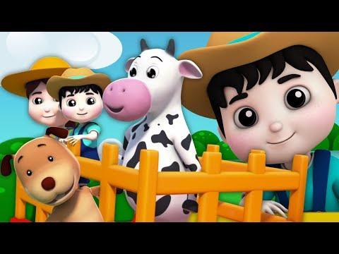 fazendeiro no dell | pré-escolares canções | rima para crianças | Farmer In The Dell | Kids Rhymes