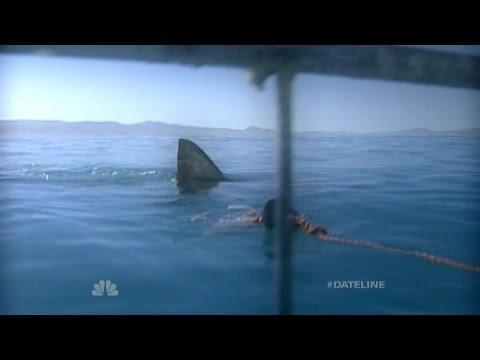 Dateline Survivor: Jaws! | Dateline NBC